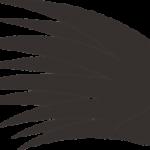 ノキシジルとミノタブ(ミノキシジルタブレット)